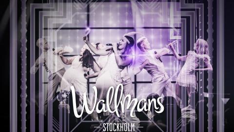 wallmanslyx2016-hogupplost